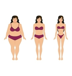 Woman slimming fat slim girl female weight loss vector
