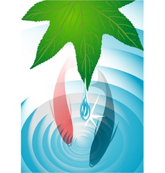 Leaf with drops and fish vector
