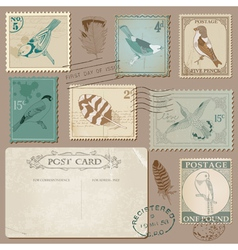 Vintage Postcard and Postage Stamps with Birds vector image