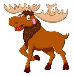 cute moose cartoon for you design vector image