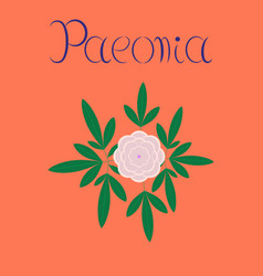 Flat on background flower paeonia vector