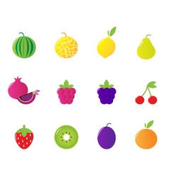 tropical  berries fruit icons vector image