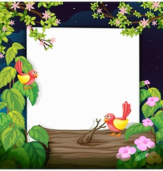 Birds and a white board vector image