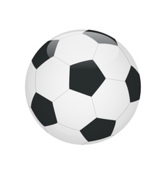 Classic soccer ball isolated on white background vector image