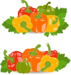 Pepper set of yellow red green and orange vector