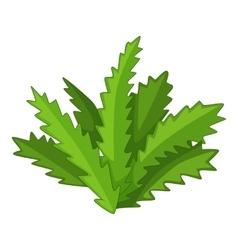 Longifolia cactus icon cartoon style vector