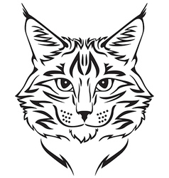 Beauty cat vector