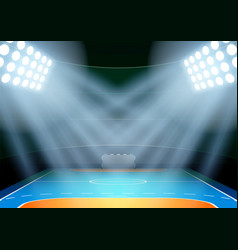 Background for posters night multisport stadium vector