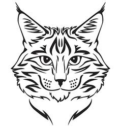 beauty cat vector image vector image