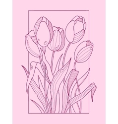 Tulip flowers color hand drawn vector