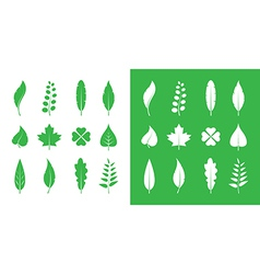 Leaves icon set vector