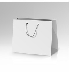 blank paper bag template 3d realistic vector image vector image