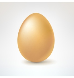 Brown egg isolated on white background vector