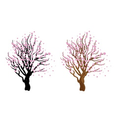 Cherry with blossom vector