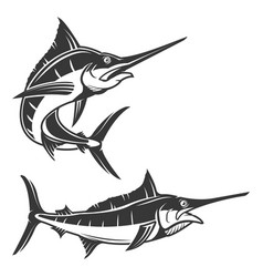 Set of swordfish isolated on white background vector