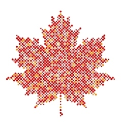Maple leaf isolated dot abstract design symbol vector
