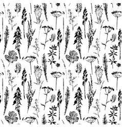 abstract botanical seamless pattern herbal vector image