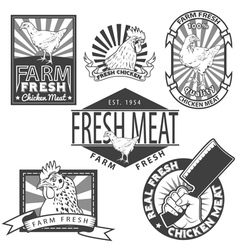 Chicken meat2 vector