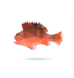 Fish abstract isolated on a white backgrounds vector