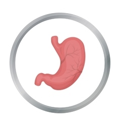 Stomach icon in cartoon style isolated on white vector image vector image