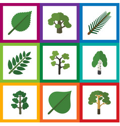 flat icon ecology set of tree spruce leaves vector image