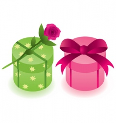 gift boxes with a rose vector image