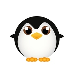 Pinguin vector image