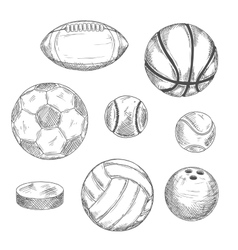 Sketches of sporting balls and ice hockey puck vector