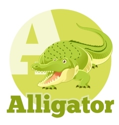 Abc cartoon alligator vector