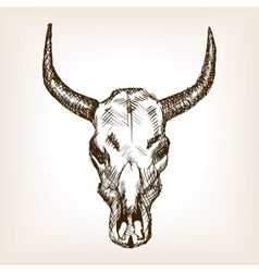 Cow skull hand drawn sketch style vector image