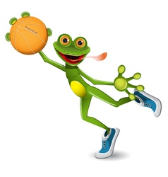 frog basketball vector image
