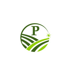 Green project solution center initial p vector