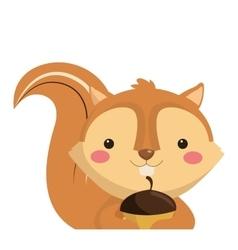 cute squirrel cartoon icon vector image