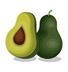 Delicious vegetable avocado isolated icon vector