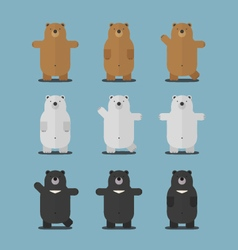 Cute big brown polar asian black bear flat design vector