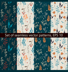 set of seamless patterns with floral design vector image