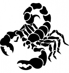 scorpion illustration vector image vector image