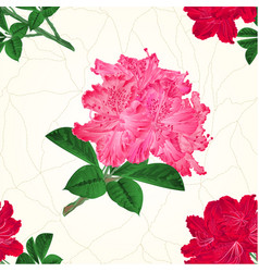 Seamless texture flowers pink and red vector