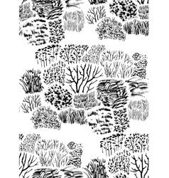 grass pattern vector image