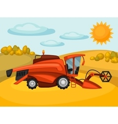 Combine harvester on wheat field agricultural vector