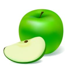 Green apple vector