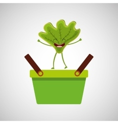 green basket market and happy lettuce vector image