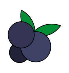 fruit icon image vector image vector image