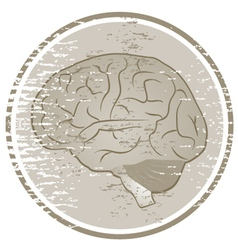 Vintage brain vector