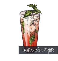 Watermelon mojito cocktail vector