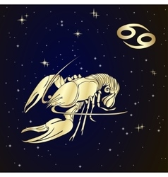 Zodiac cancer is the starry sky vector
