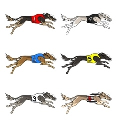 Set of running dog saluki breed vector