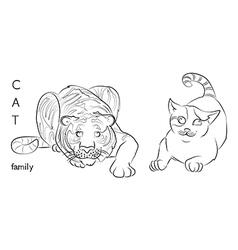 Cat tiger vector
