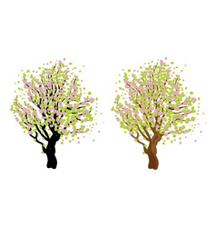 Cherry with blossom2 vector image