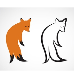 group of fox design on white background vector image vector image